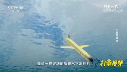 模样像飞机,却在水下工作!来了解一下水下滑翔机