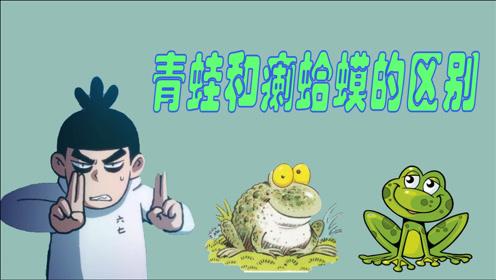 刺客伍六七搞笑动漫:青蛙和癞蛤蟆的区别,你