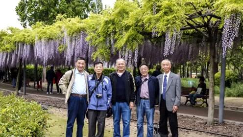 嘉定紫腾花游海工大上海部前老学员照片集是我