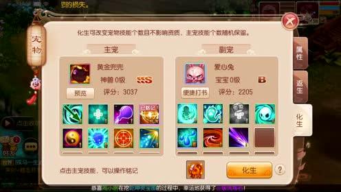 台湾妹娱乐中文
