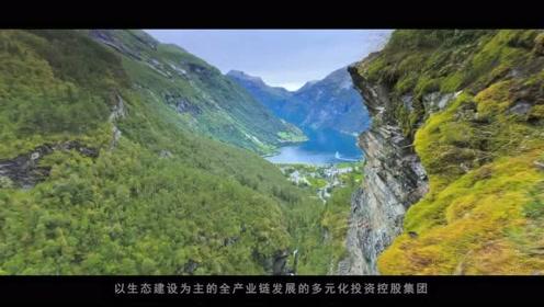 2017版绿地博大绿泽集团企业宣传片