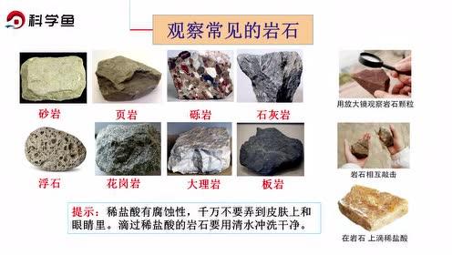 蘇教版五年級科學下冊第四單元 巖石與礦物