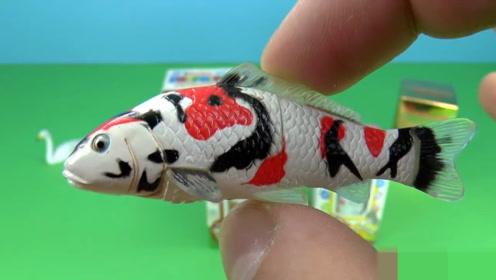 适合小朋友的趣味玩具:拼装的小鲤鱼,好可爱