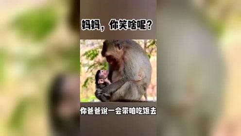 动物搞笑配音,妈妈你笑啥呢