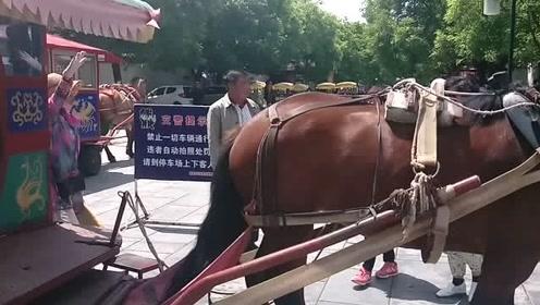 来山东曲阜旅游,150元可体验皇帝的待遇?!