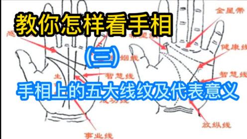 手相教学视频(三)手相五大线纹及代表意义
