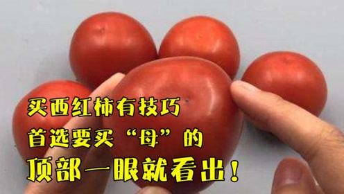 """买西红柿有技巧,首选要买""""母""""的,顶部一眼就看出,沙甜又多汁"""