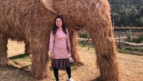 老公带媳妇到景区旅游,第一次见真大稻草人大象,忍不住过去合影