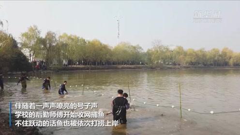 """武汉科技大学:""""全鱼宴""""又来了!"""