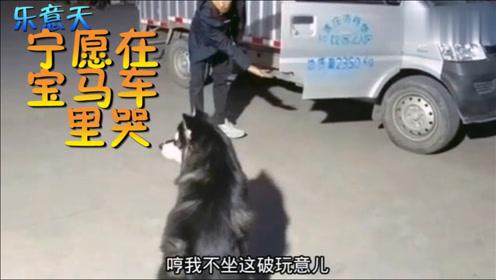 【搞笑视频】现在宠物都这么现实吗?二哈:我宁愿在宝马车里哭!
