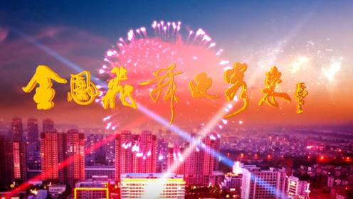 金凤飞舞迎客来——淮南凤台城市宣传片