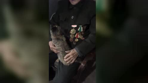 92岁抗日英雄,看到这这一幕,哭了