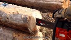 老外网购中国电锯,在树木上一试,直呼中国机械这么强了?
