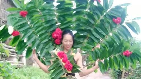 广东农村美女创意的树叶服装,穿在身上在村里跳孔雀舞,真是让人开眼界了!