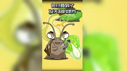 蜗牛也有坏的,长成这样的,就是重大危害性生