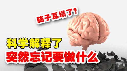 新知人类|科学解释了,脑子突然忘记要做什么
