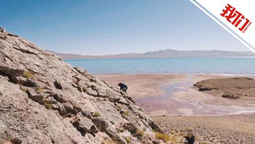 探索青藏高原 发掘三亿年前的海底世界