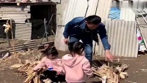 俩闺女回农村爷爷家,第二天小叔发来一段视频,让我忍不住的笑了啊!