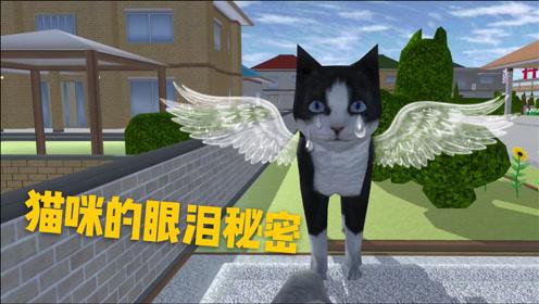樱花校园模拟器:女主家猫咪的眼泪隐藏着什么
