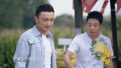 金靖与刘胜瑛包装蔬菜,男生组却在吃辣椒,咋回事?