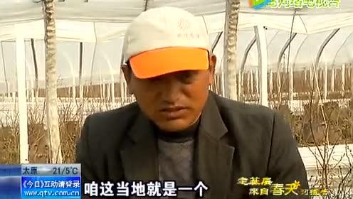 青岛电视台采访 果蔬基地的生意经