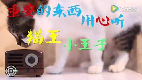 猫王新品小王子鬼畜MV,新一代洗脑神曲蛋生!