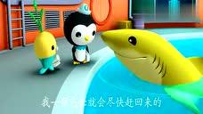 海底小纵队与迷路的柠檬鲨