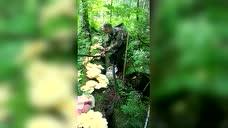 第一次见这么多野生蘑菇,看把大叔给高兴的