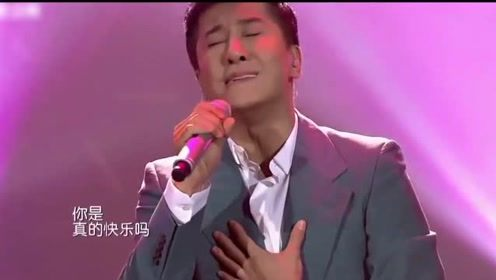 毛宁唱给杨钰莹的一首歌,情到深处都快哭了,