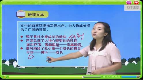 九年级语文上册16 孤独之旅(曹文轩)