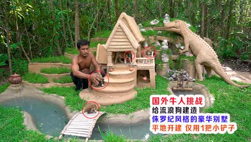 国外小哥荒野建造小狗别墅,恐龙、泳池、花园、洋房全都有