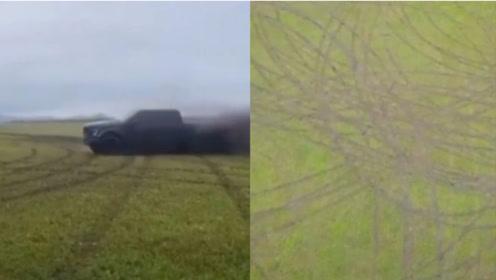 开越野车碾压呼伦贝尔草原2.93亩,当地林草局处罚:当事人给我种回去!