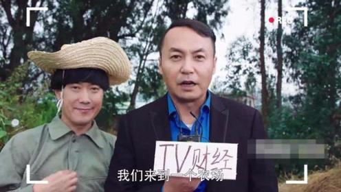 陈翔六点半,茅台化身记者采访蘑菇头,被气得想打人