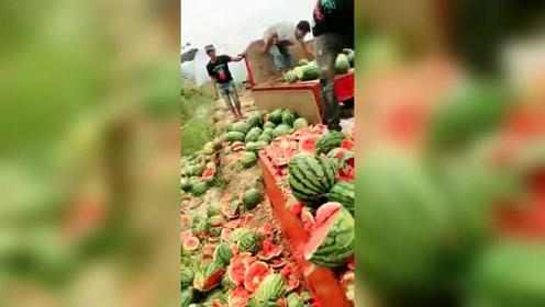 人心可贵人性可怕,做果蔬行业都有个潜规则,宁可扔掉也不送人!