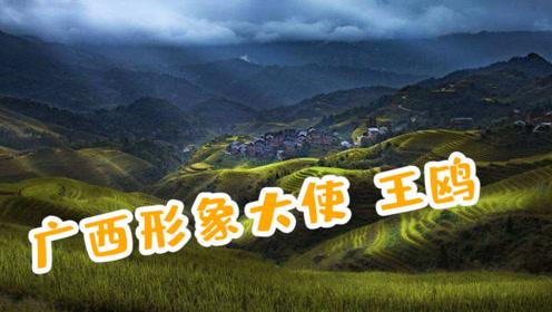 """广西举办""""冬游广西""""推介会 王欧担任形象大使为壮美广西代言"""