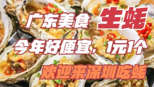 广东美食生蚝今年便宜,1元1个,美味无比,欢迎到深圳来吃生蚝吧