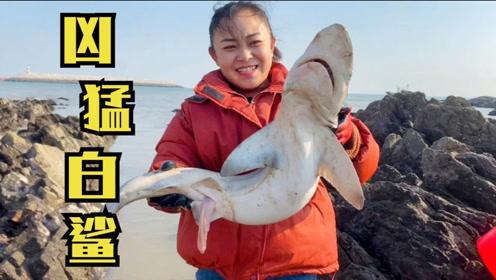 赶海偶遇凶猛白鲨,看到尖叫一声!竟然还敢拿起来,胆子真大