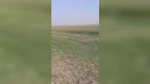 喜欢视频的关注一下,带你了解农村生活