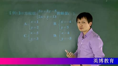 初一数学重难考点系列解析 七年级_二元一次方程组精析
