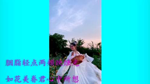 华语新碟:鸾音社、洛天依 - 桃花妆 音乐好听