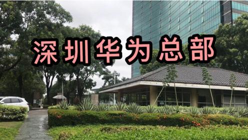 实拍任正非的深圳华为总部,连美国都害怕的科技公司,中国的骄傲
