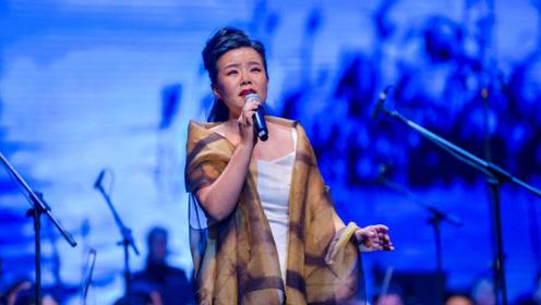 龚琳娜承受着多大的压力?做出来的音乐不被认可,想要发扬中国的音乐
