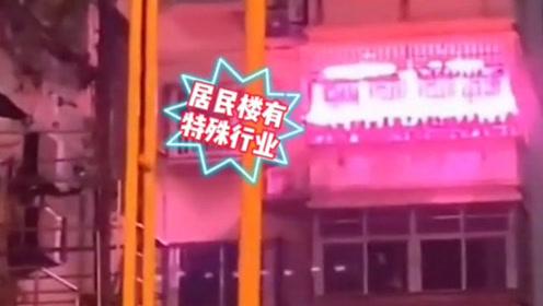 """居民楼每晚闪现粉色灯光,邻居误以为""""特殊行业"""",真相令民警哭笑不得!"""
