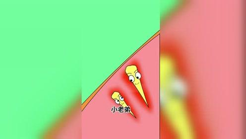 挑刺#动画短片#搞笑视频#生活 2