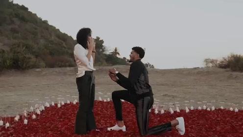 太浪漫了!哈里斯订婚成功