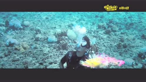 陈伟霆、郑秀妍《Love!Love!Aloha!》《那件疯狂的小事叫爱情》主题曲