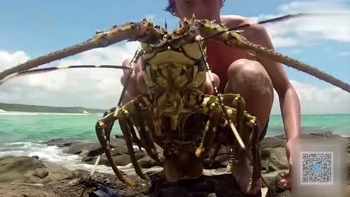 实拍小伙下海抓龙虾 我只想说胆子真大