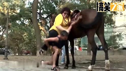 国外恶搞视频,胖女人骑马!