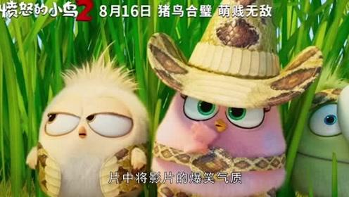 《a电影的电影2》8月16日上映,这可是今夏最电影的经典了小鸟英国爆笑图片