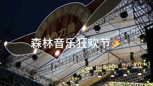 2019.10.5 南京森林音乐狂欢节